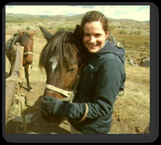Weltreise Pferd