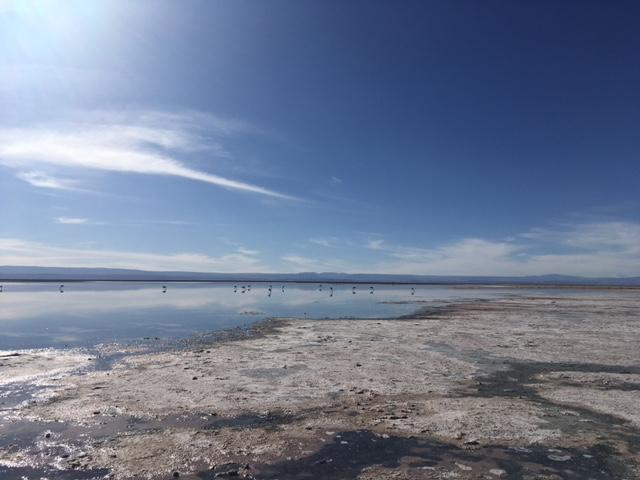 Atacama Desert: Die kleinen Punkte in der Ferne sind Flamingos.