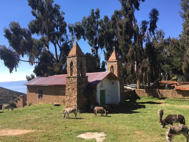 Auf der Isla del Sol / Titicaca-See