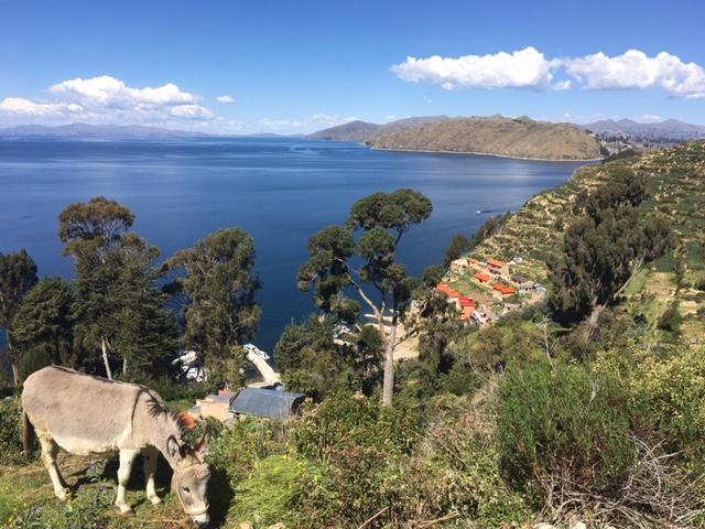 Blick von der Isla del Sol / Titicaca-See