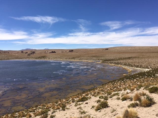 Uyuni-Tour: Laguna Negra