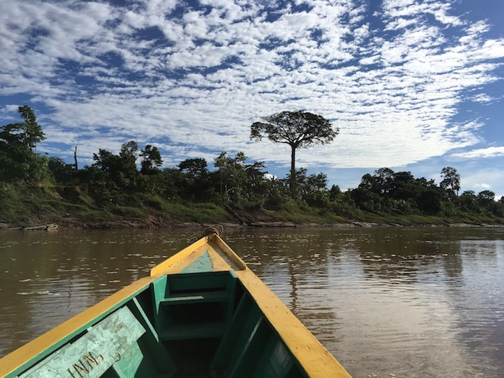 Tambopata: Fluss