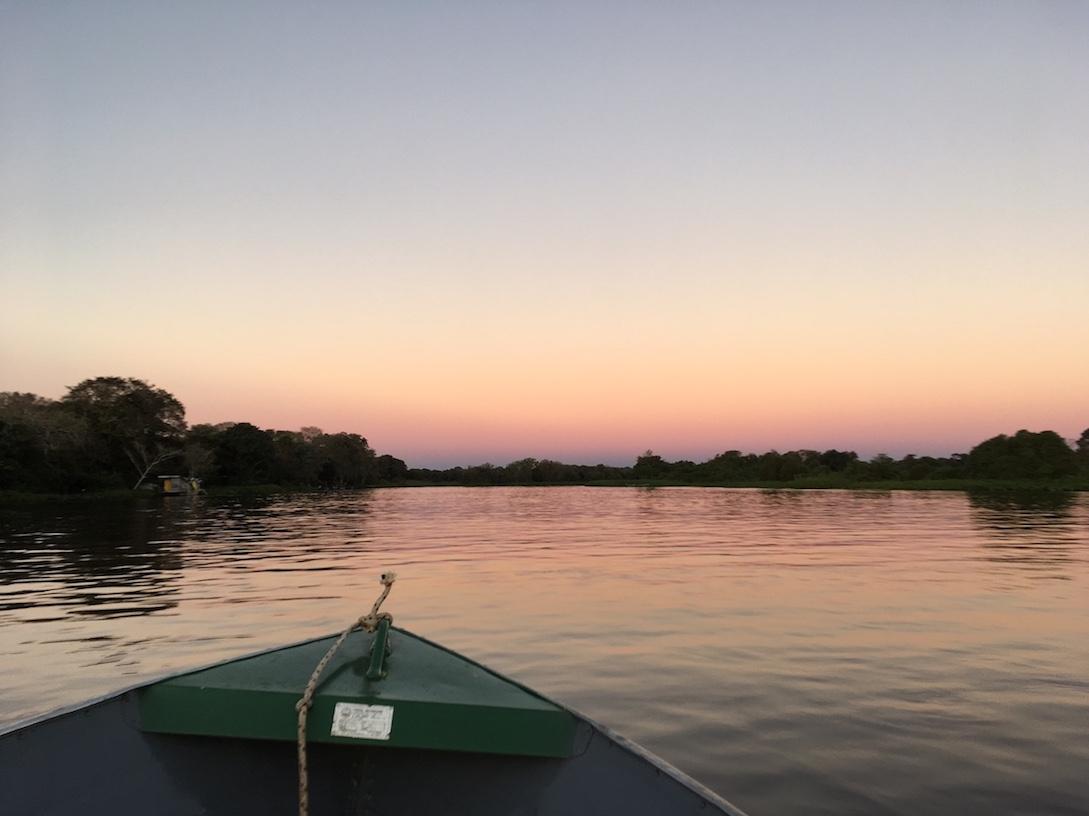 Pantanal: Ich halte mich noch immer über Wasser.