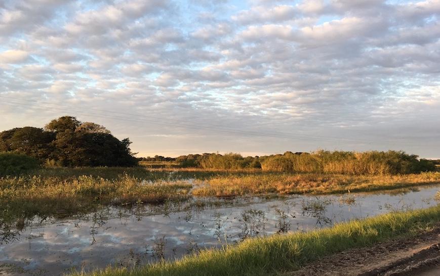 Pantanal: Bald geht die Sonne unter.