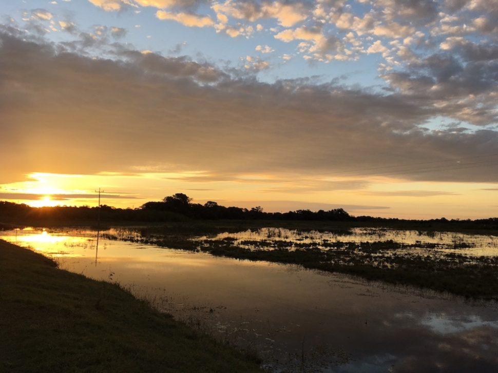 Pantanal: Jetzt ist sie weg - die Sonne.