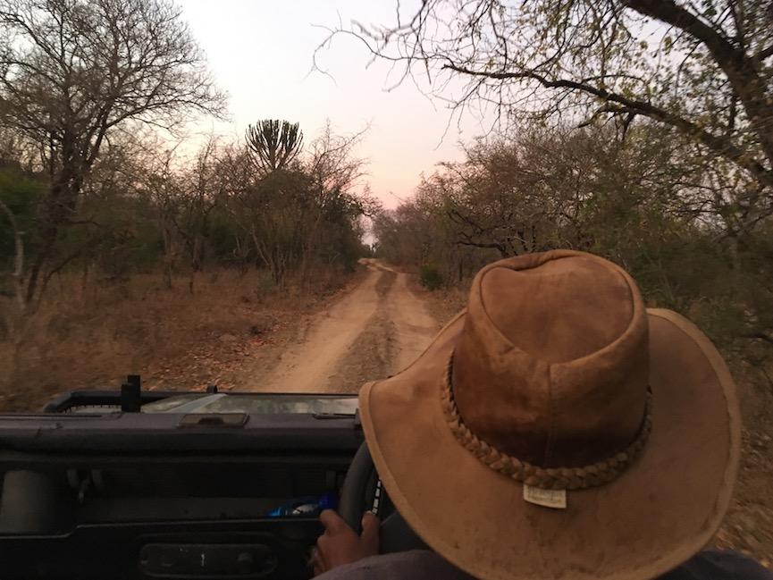 Safari im Mkhaya Game Reserve