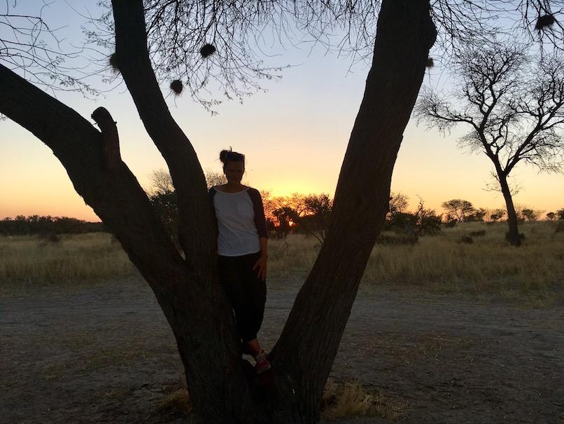 CKGR Campsite (ein Baum, sonst nichts)