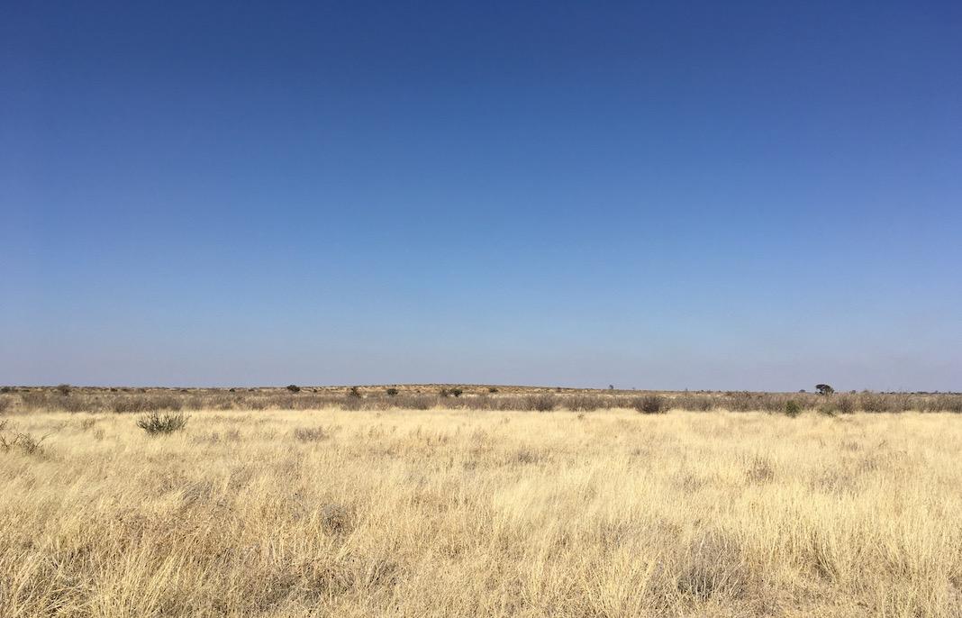 CKGR View