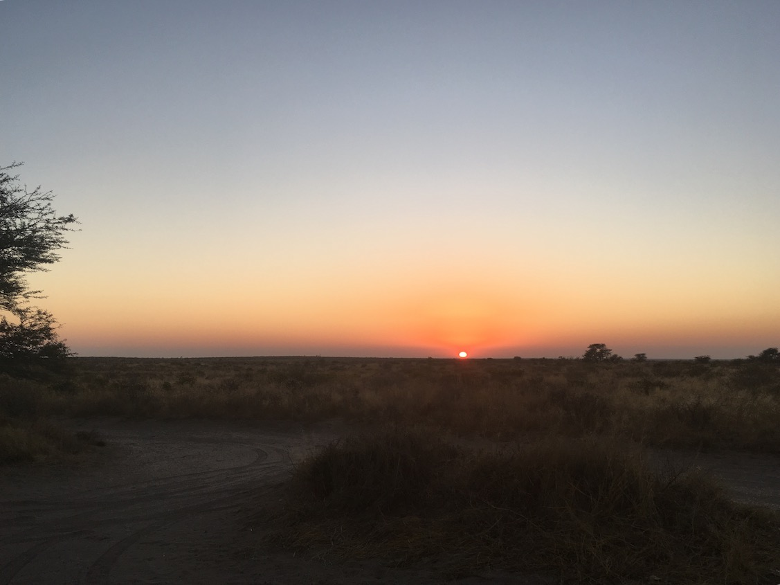 Central Kalahari GR Sunrise