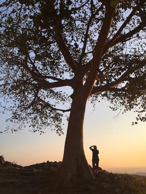 Blick von Great Zimbabwe