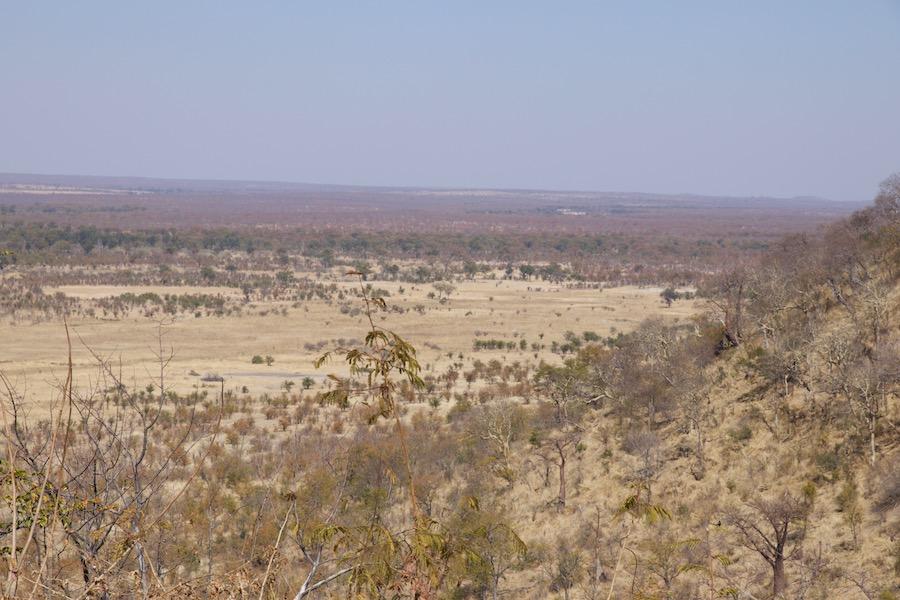 Hwange National Park – Blick vom Camping-Platz