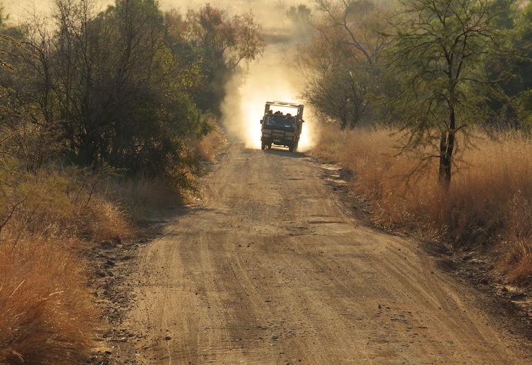 Safari in Pilanesberg