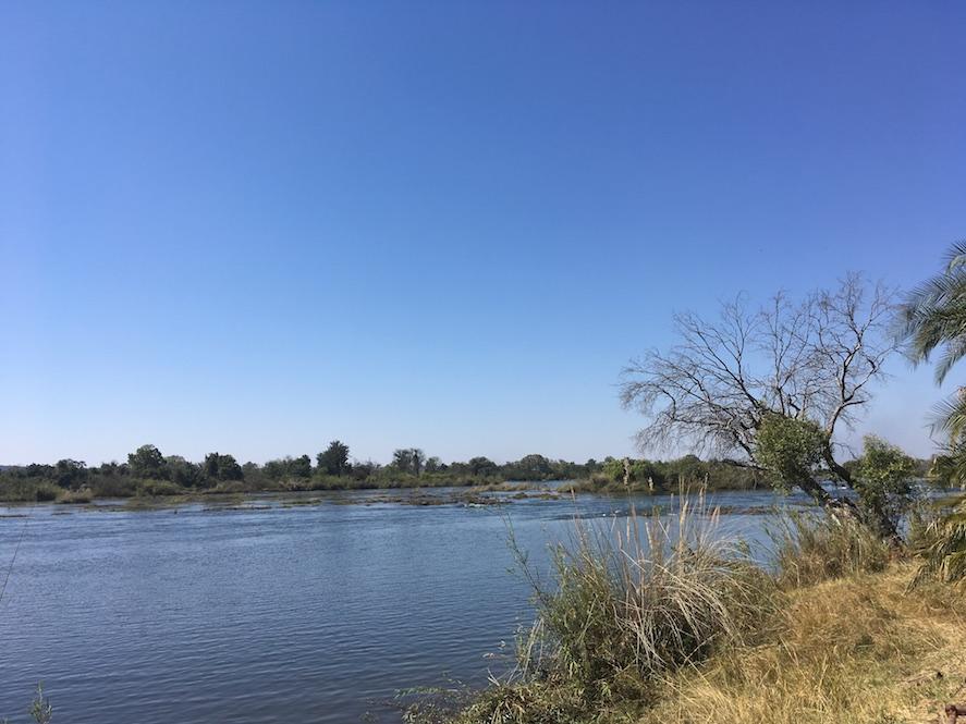 Zambezi River - noch beschaulich