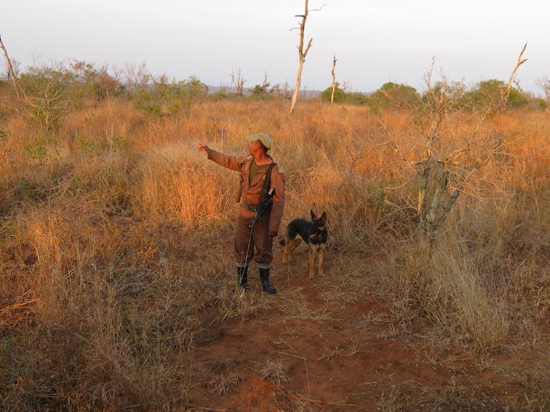 Wildhüter im Mkhaya Game Reserve